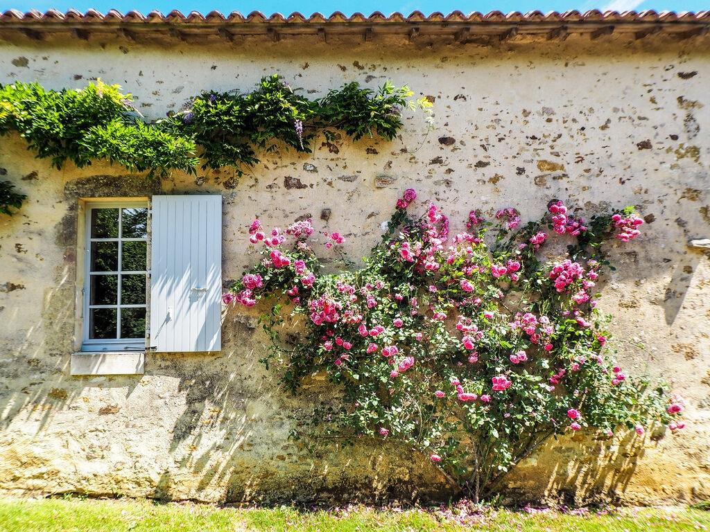 Ferienhaus Luxuriöses Ferienhaus mit eigenem Pool in Saint-Laurent (1657823), La Caillère St Hilaire, Vendée Binnenland, Pays de la Loire, Frankreich, Bild 32