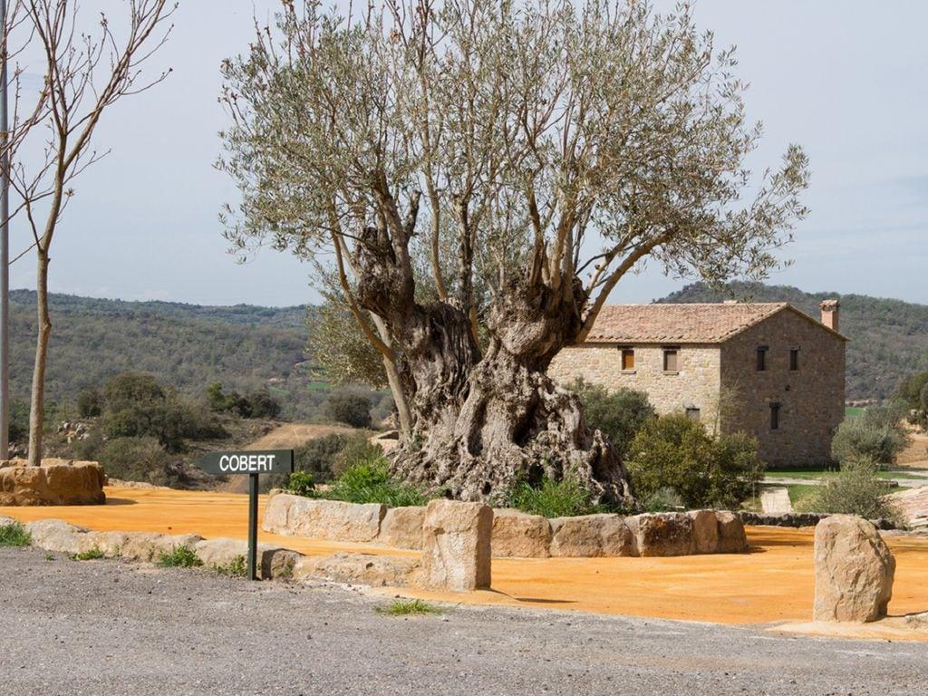 Ferienhaus Denkmalgeschützte Villa in Lloberola mit Swimmingpool (1657581), Sanauja, Lleida, Katalonien, Spanien, Bild 27