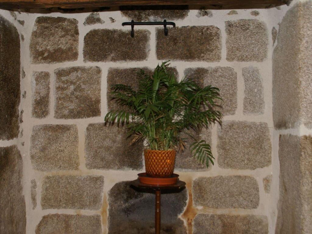 Ferienhaus Gemütliches Ferienhaus in Sénezergues mit Garten (1657971), Cassaniouze, Cantal, Auvergne, Frankreich, Bild 23