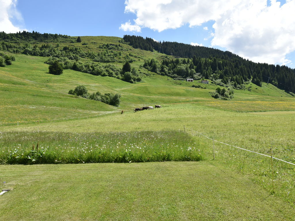 Ferienwohnung Gemütliche Ferienwohnung in Obersaxen mit Terrasse (1668634), Obersaxen (alle), Surselva, Graubünden, Schweiz, Bild 18