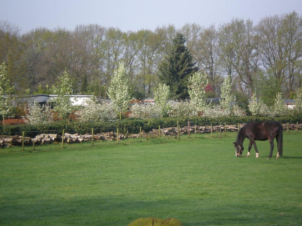 Ferienhaus Vakantiepark de Tabaksschuur 2 (1733799), Elst UT, , Utrecht, Niederlande, Bild 17