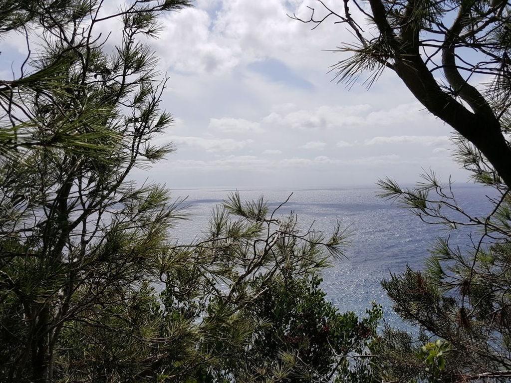 Ferienhaus Can Alejo (2404289), Mola, Formentera, Balearische Inseln, Spanien, Bild 9