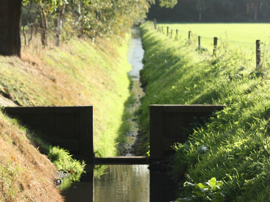 Ferienhaus Ruhig gelegenes Ferienhaus in Geesteren für Naturliebhaber (256887), Geesteren OV, Twente, Overijssel, Niederlande, Bild 25