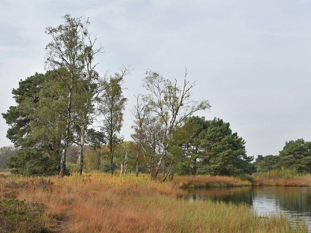 Ferienhaus Ruhig gelegenes Ferienhaus in Geesteren für Naturliebhaber (256887), Geesteren OV, Twente, Overijssel, Niederlande, Bild 30