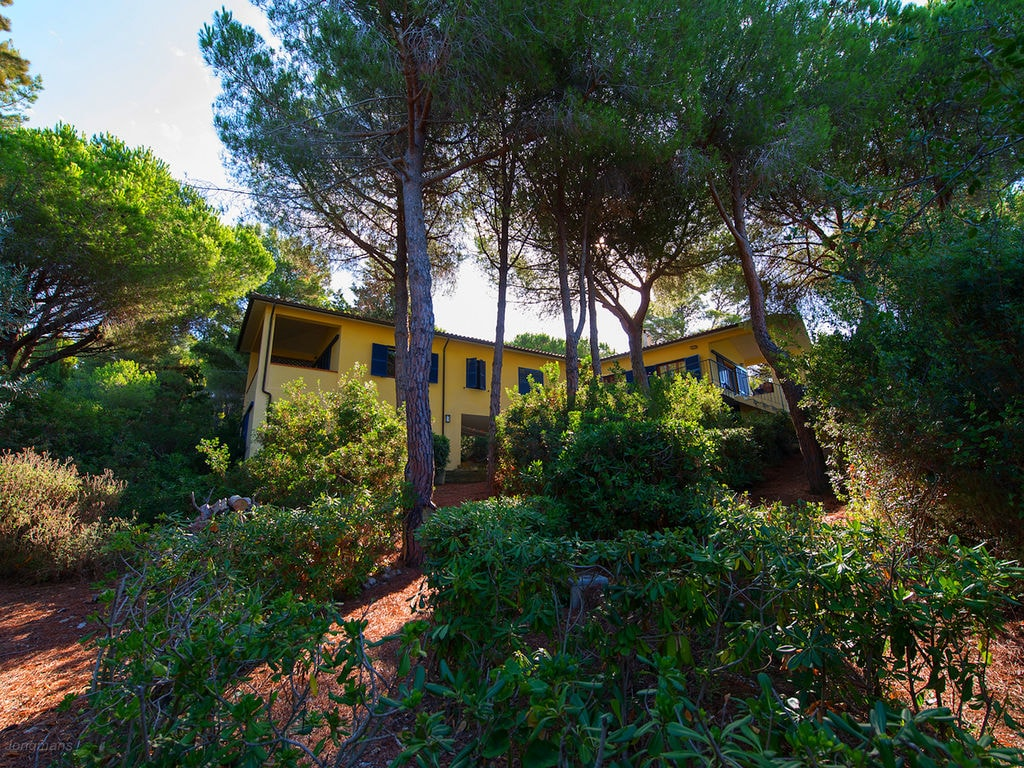 Ferienhaus Gemütliches Cottage in Meernähe in Capoliveri (1884540), Capoliveri, Elba, Toskana, Italien, Bild 29