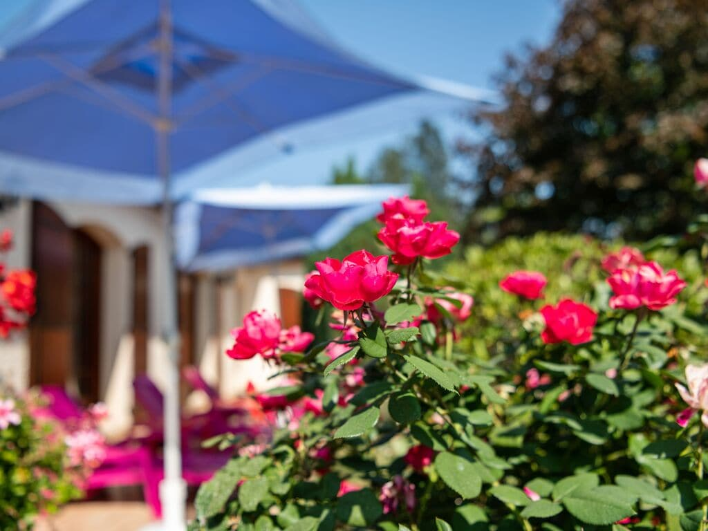 Maison de vacances Schöne Villa mit eigenem Garten in Pineuilh Aquitanien (2003328), Pineuilh, Gironde, Aquitaine, France, image 32