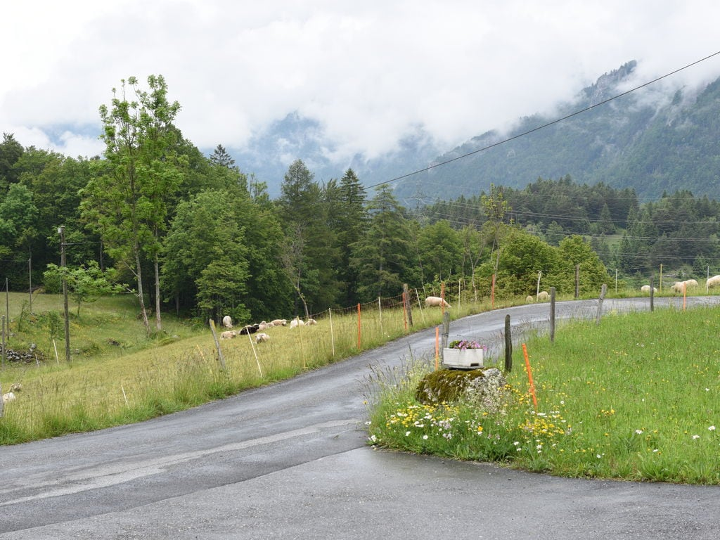 Ferienwohnung Sandra (1931808), Schattenhalb, Meiringen - Hasliberg, Berner Oberland, Schweiz, Bild 22