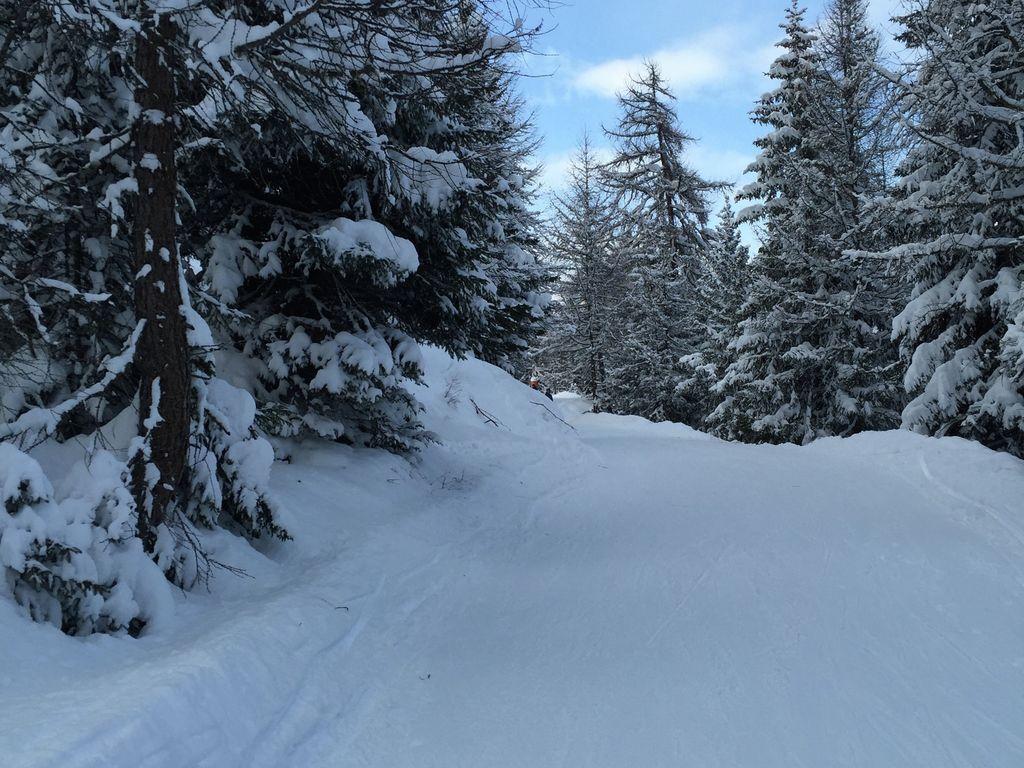 Ferienhaus Idyllisches Ferienhaus in La Tzoumaz nahe dem Skigebiet (2284195), Mayens-de-Riddes, 4 Vallées, Wallis, Schweiz, Bild 32