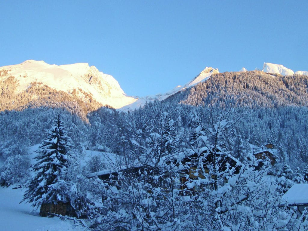 Appartement de vacances Bergheimat (1963289), Virgen, Osttirol, Tyrol, Autriche, image 16