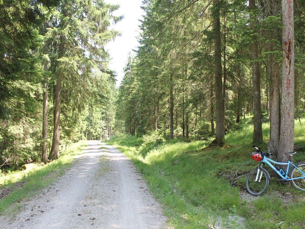 Ferienwohnung Gemütliche Wohnung in der Nähe des Skigebietes Halblech (2020655), Halblech, Allgäu (Bayern), Bayern, Deutschland, Bild 33