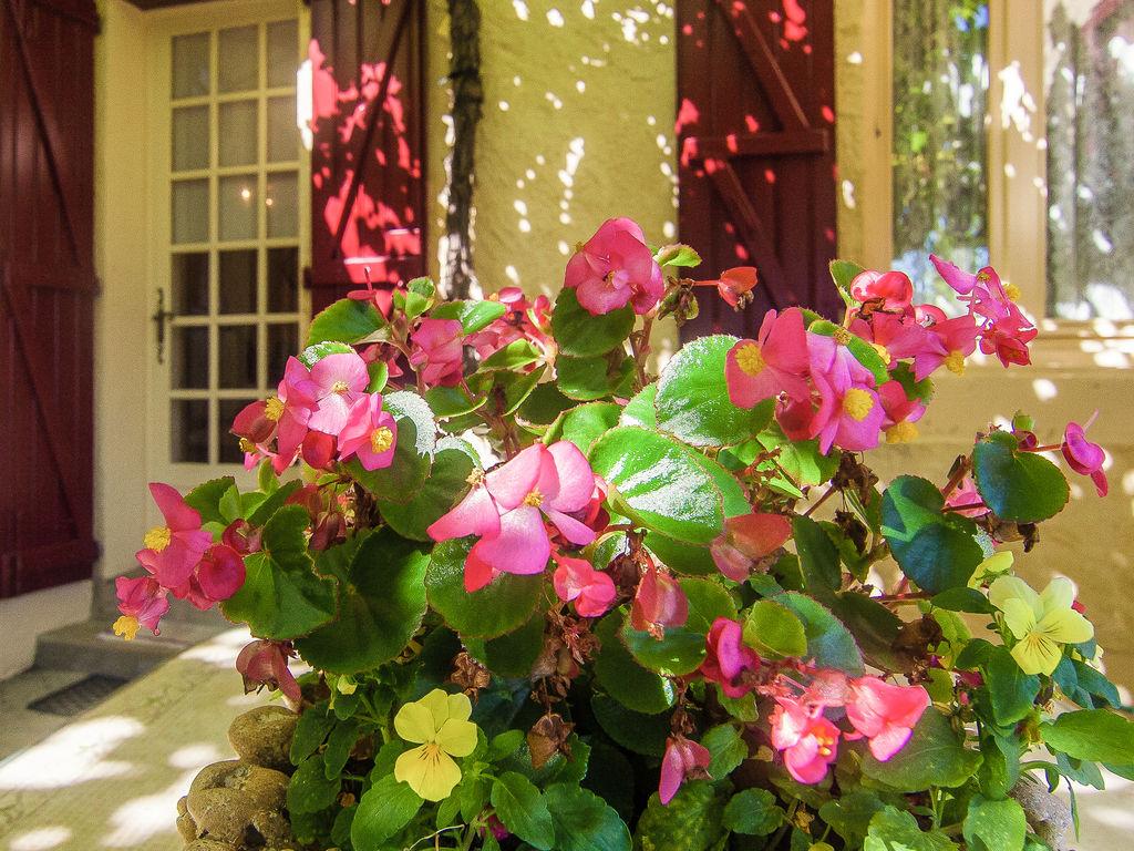 Ferienhaus Elegantes Ferienhaus in Chasteaux mit Terrasse, Grill, Liegestühlen (1997106), Saint Pantaléon de Larche, Corrèze, Limousin, Frankreich, Bild 27