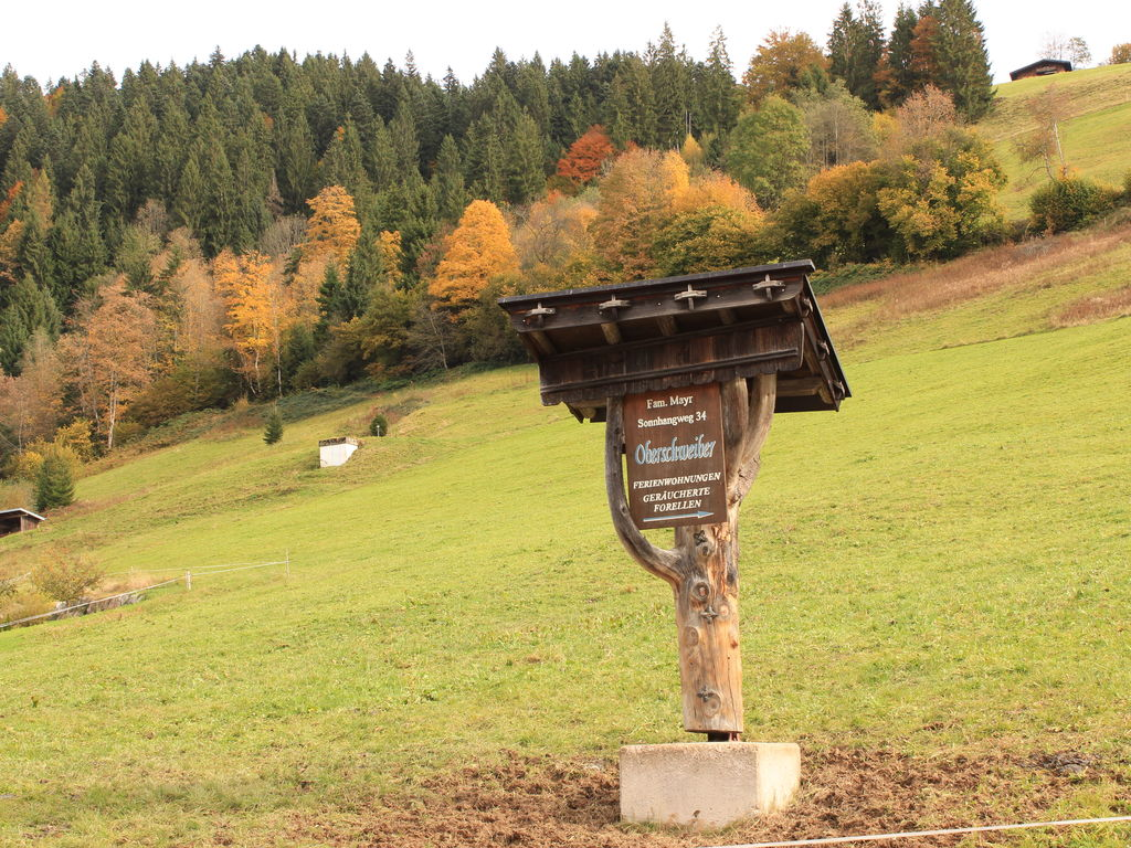 Appartement de vacances Oberschweiberhof (2016251), Wildschönau-Niederau, Hohe Salve, Tyrol, Autriche, image 20