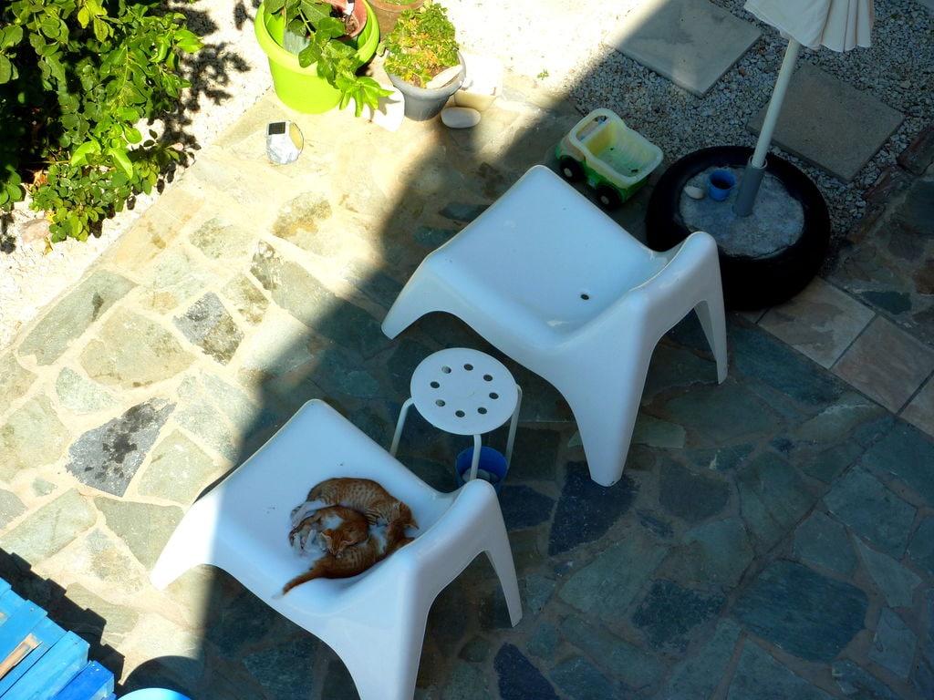 Ferienwohnung Gemütliches Studio-Apartment in Kalyves, Kreta mit Meerblick (2022097), Neon Khorion Kriti, Kreta Nordküste, Kreta, Griechenland, Bild 9