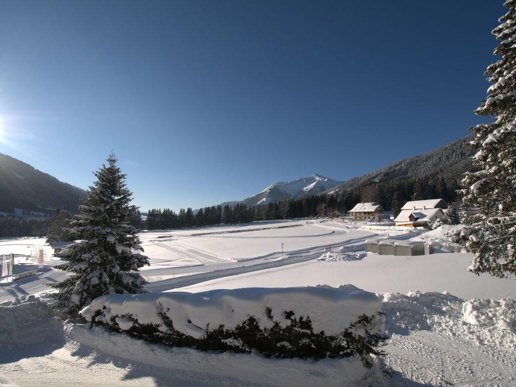 Holiday house Brigitte (2023311), Hohentauern, Murtal, Styria, Austria, picture 22