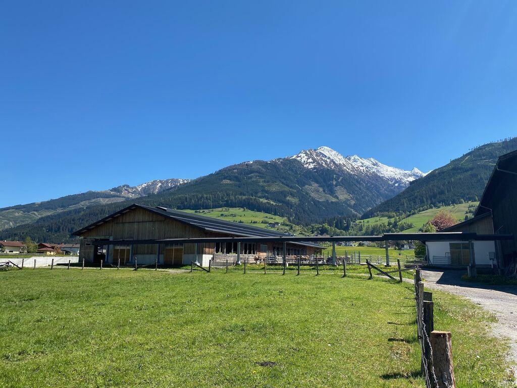 Ferienwohnung Modernes Apartment unweit des Skigebietes in Niedernsill (2037408), Niedernsill, Pinzgau, Salzburg, Österreich, Bild 32
