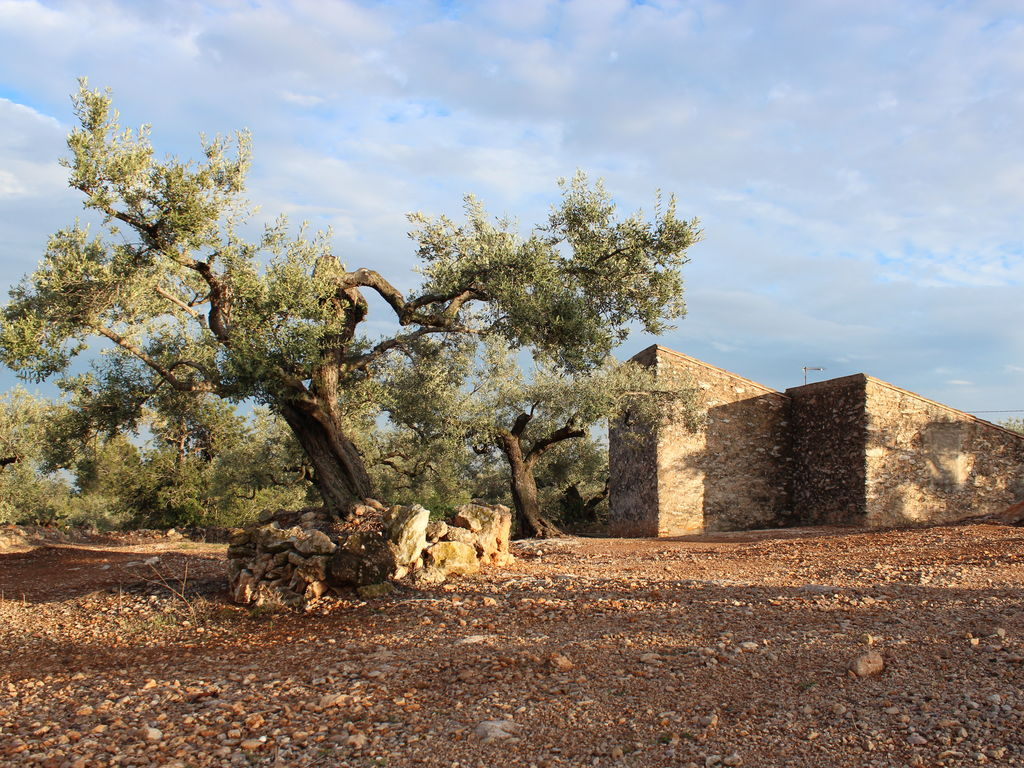 Ferienhaus Finca Casa Filou (2077251), L'Ampolla, Costa Dorada, Katalonien, Spanien, Bild 11
