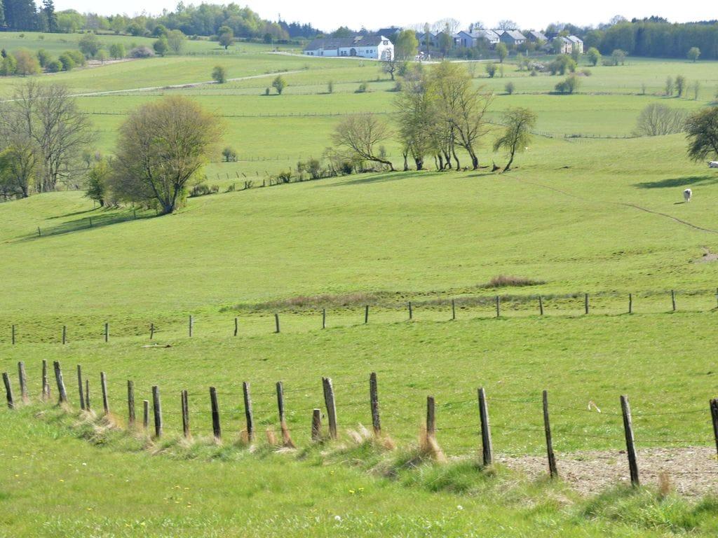 Ferienhaus Le Bois Aux Charmes (2128190), Wéris, Luxemburg (BE), Wallonien, Belgien, Bild 36