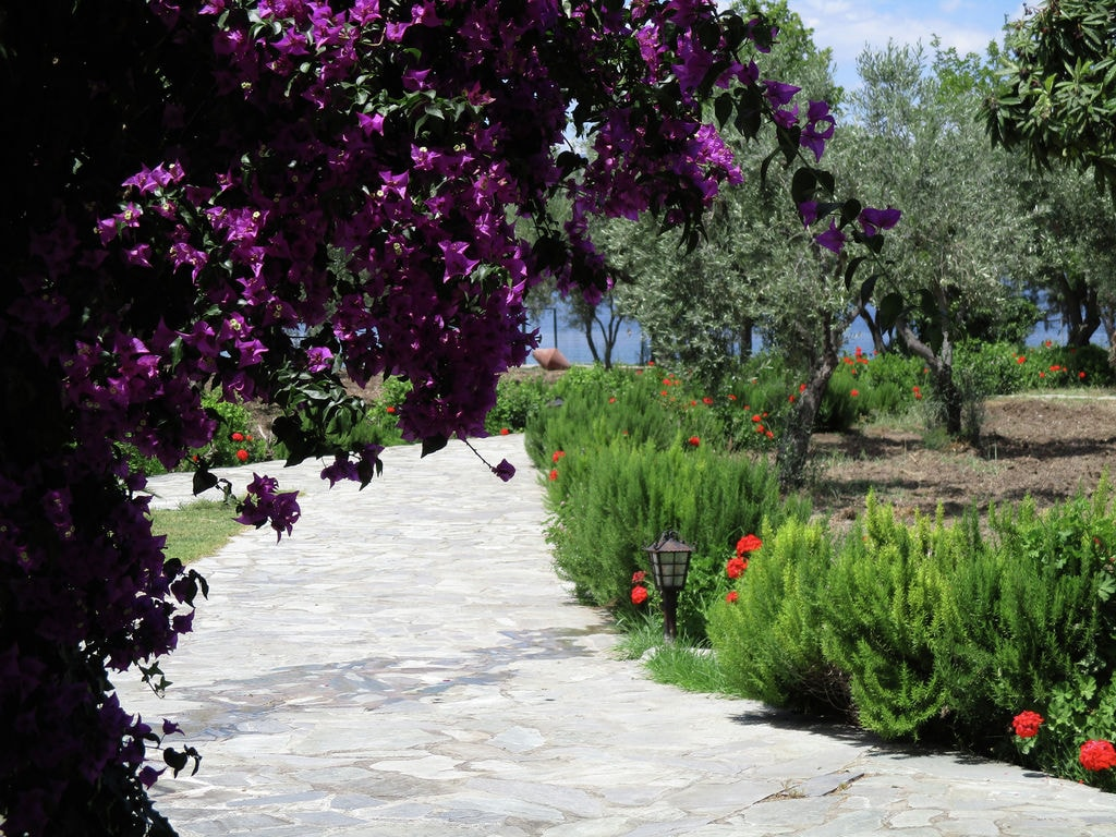Holiday house Country house with private beach Upper floor (2099546), Arkitsa, , Central Greece, Greece, picture 21