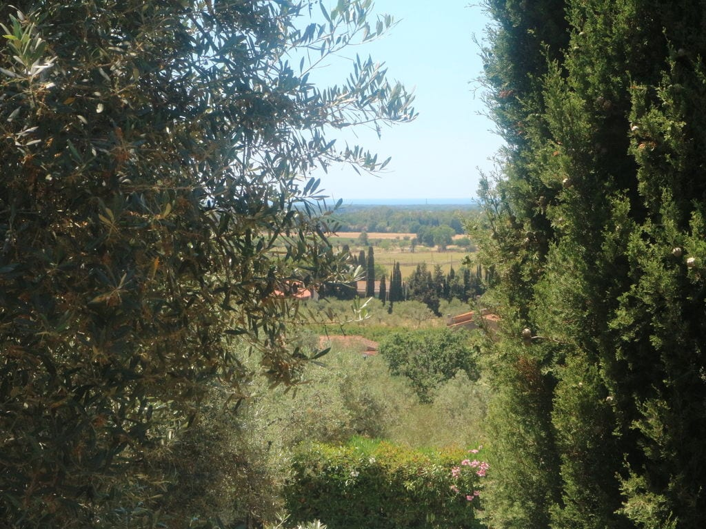 Holiday house Ruhiges Ferienhaus in Castagneto Carducci mit Garten (2081401), Castagneto Carducci, Livorno, Tuscany, Italy, picture 23