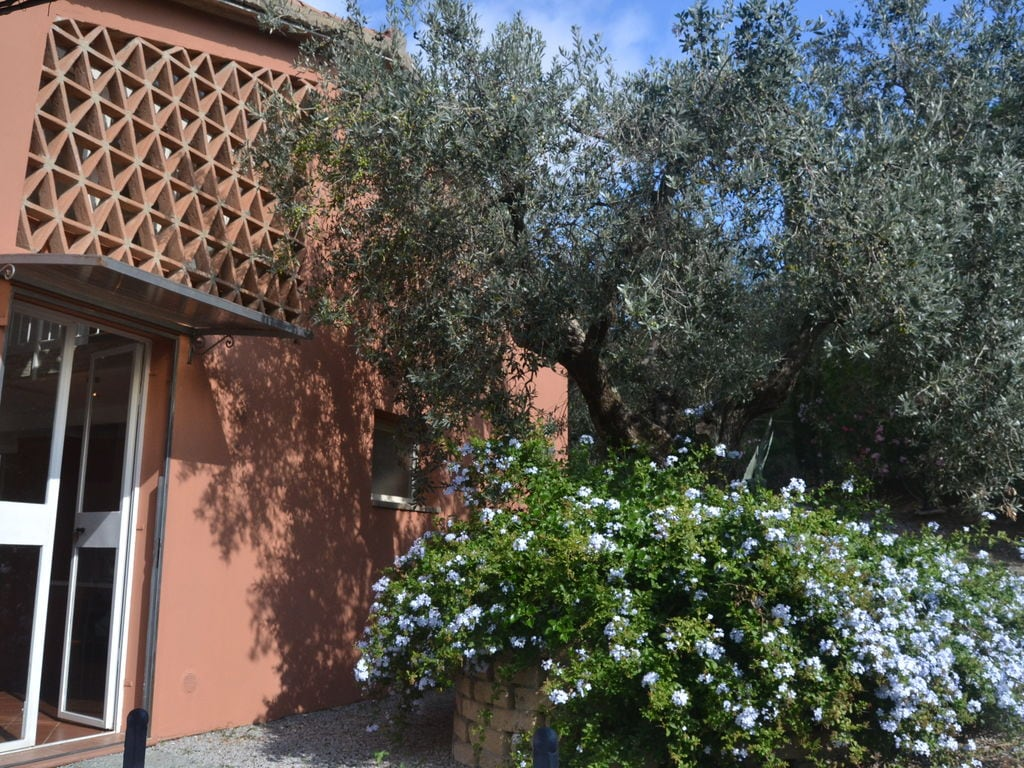 Holiday house Ruhiges Ferienhaus in Castagneto Carducci mit Garten (2081401), Castagneto Carducci, Livorno, Tuscany, Italy, picture 19