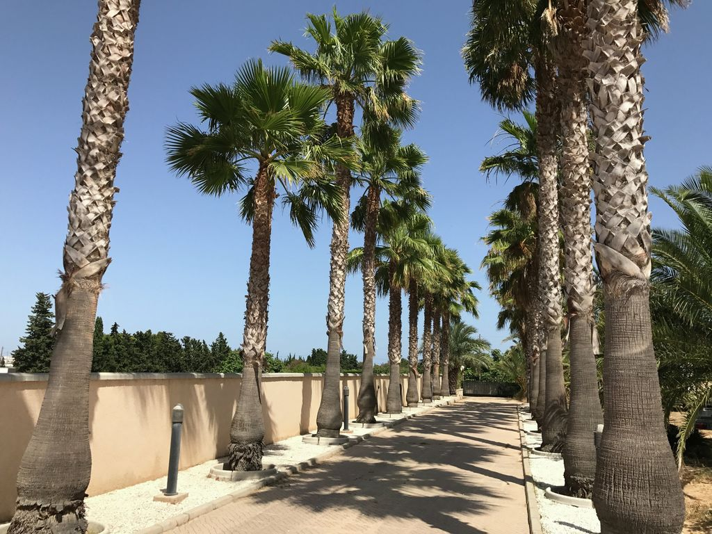 Maison de vacances Villa Yuko (2178833), Torrevieja, Costa Blanca, Valence, Espagne, image 25