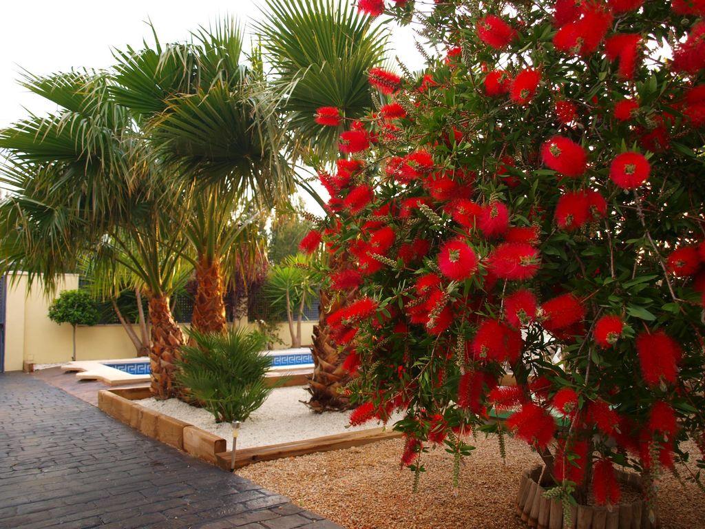 Holiday house Villa Melich (2219429), L'Ametlla de Mar, Costa Dorada, Catalonia, Spain, picture 17