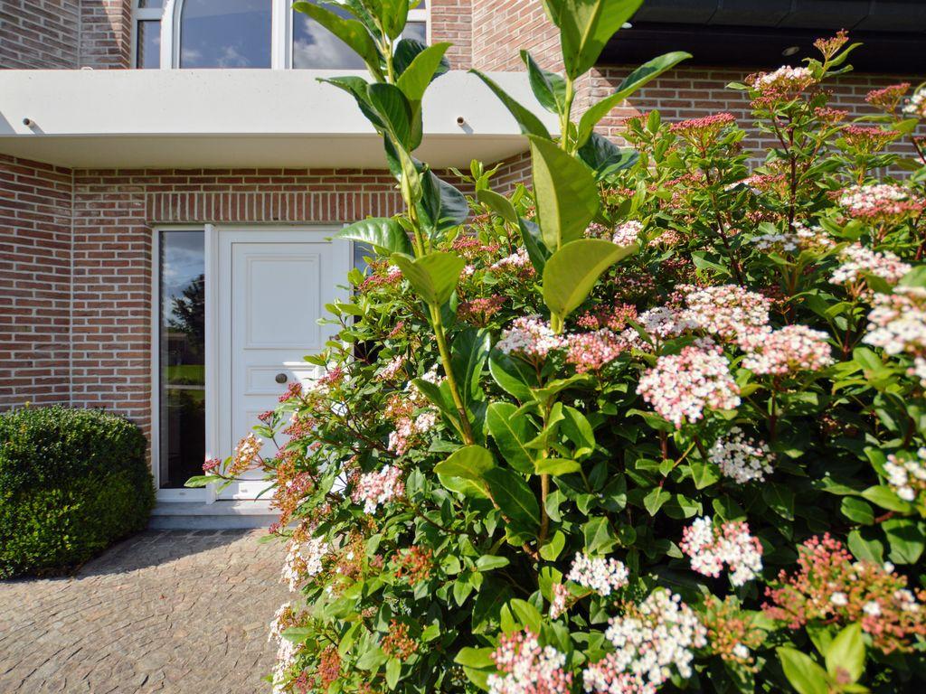 Ferienhaus  (2291288), Zingem, Ostflandern, Flandern, Belgien, Bild 4