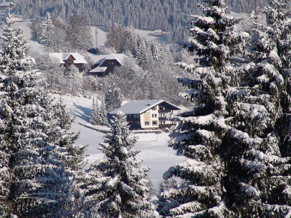 Ferienwohnung Nette Ferienwohnung in Afritz am See bei Skigebiet Gerlitzen (2236728), Afritz am See, Villach-Land, Kärnten, Österreich, Bild 38