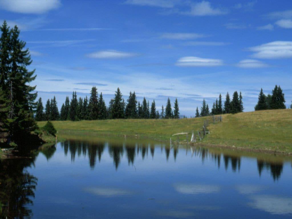 Ferienwohnung Nette Ferienwohnung in Afritz am See bei Skigebiet Gerlitzen (2236728), Afritz am See, Villach-Land, Kärnten, Österreich, Bild 28