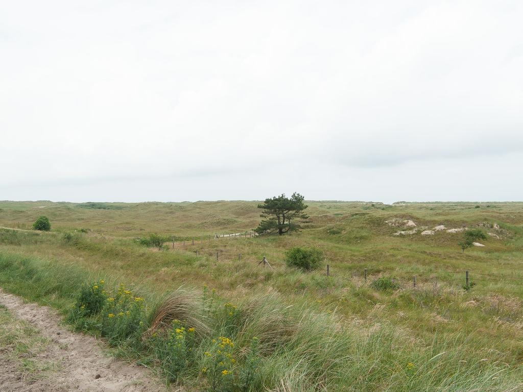 Ferienhaus Komf. Lodge mit Kombi-Mikrowelle, 900 m vom Strand entf. (2284199), Hollum, Ameland, Friesland (NL), Niederlande, Bild 19