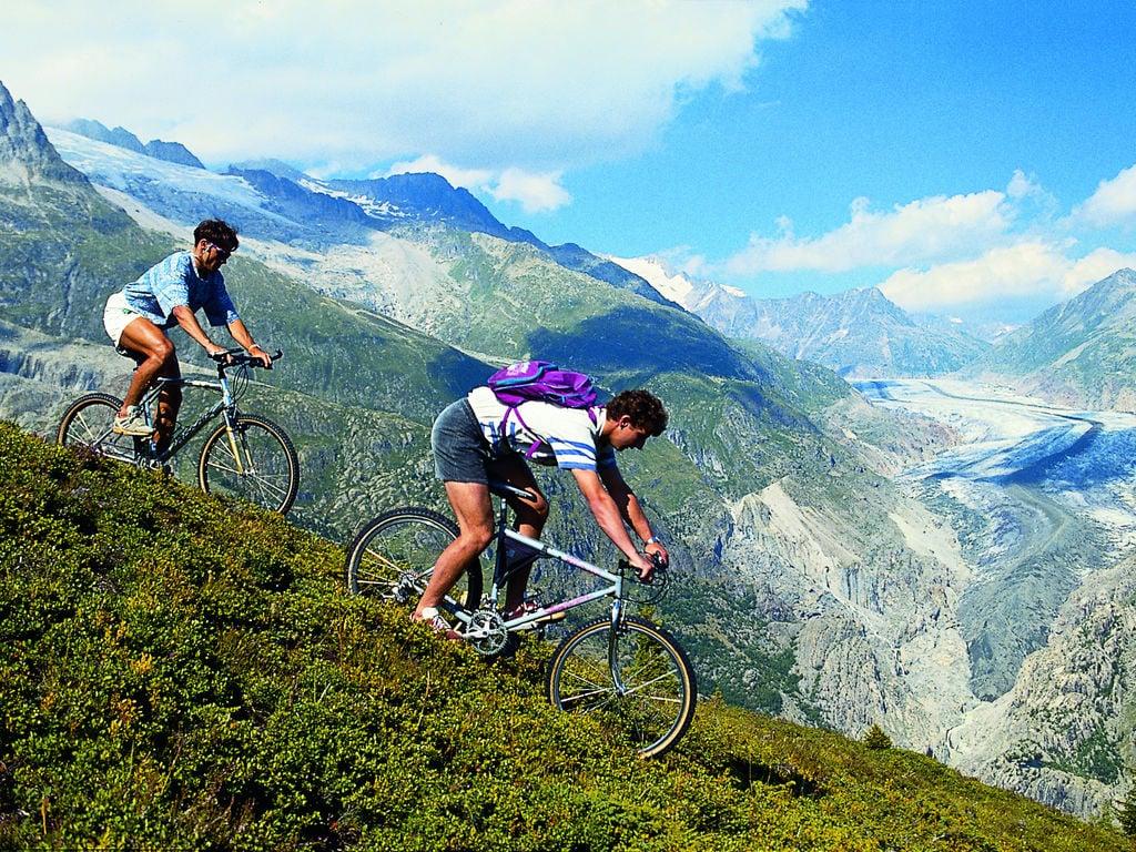 Ferienhaus Komfortables Chalet mit Blick auf die Alpen in Vex (2303936), Thyon-Les Collons, 4 Vallées, Wallis, Schweiz, Bild 20