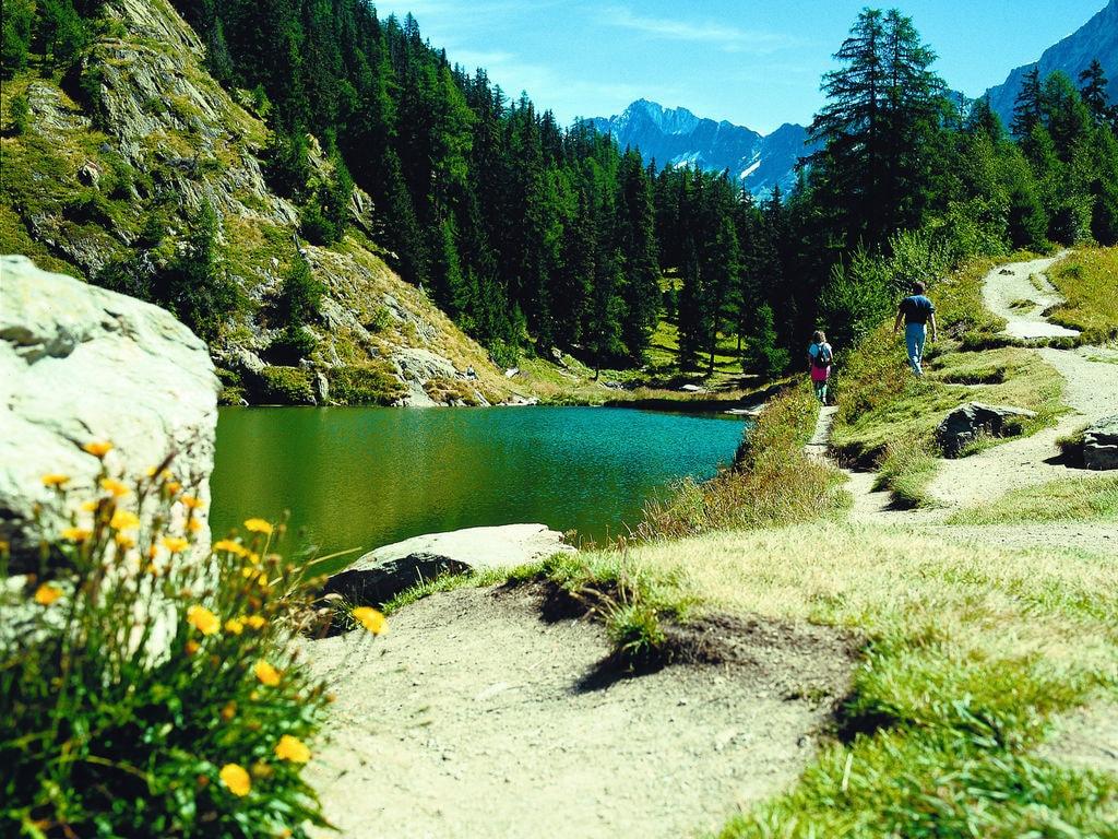 Ferienhaus Komfortables Chalet mit Blick auf die Alpen in Vex (2303936), Thyon-Les Collons, 4 Vallées, Wallis, Schweiz, Bild 19