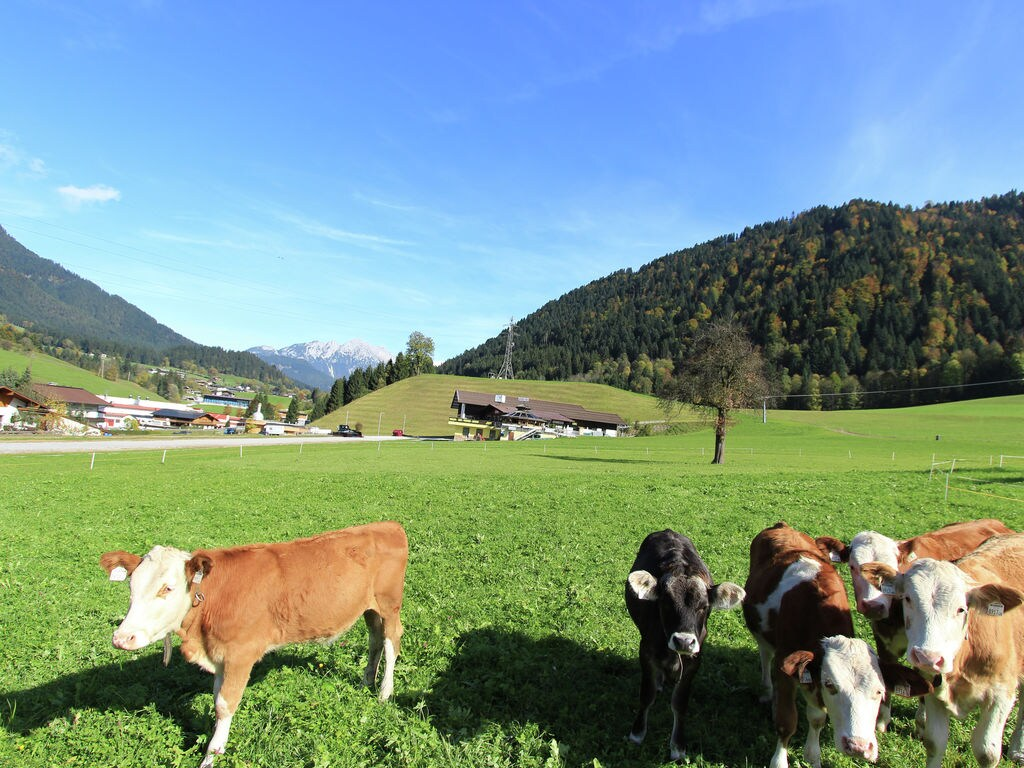 Appartement de vacances Sieberer (2302467), Itter, Hohe Salve, Tyrol, Autriche, image 23