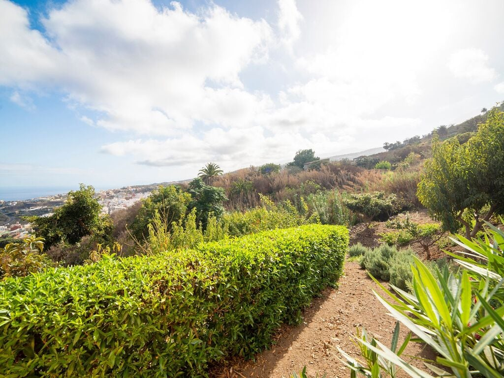 Holiday house Komfortables Ferienhaus mit Terrasse in Icod de los Vinos (2373009), Icod de los Vinos, Tenerife, Canary Islands, Spain, picture 20