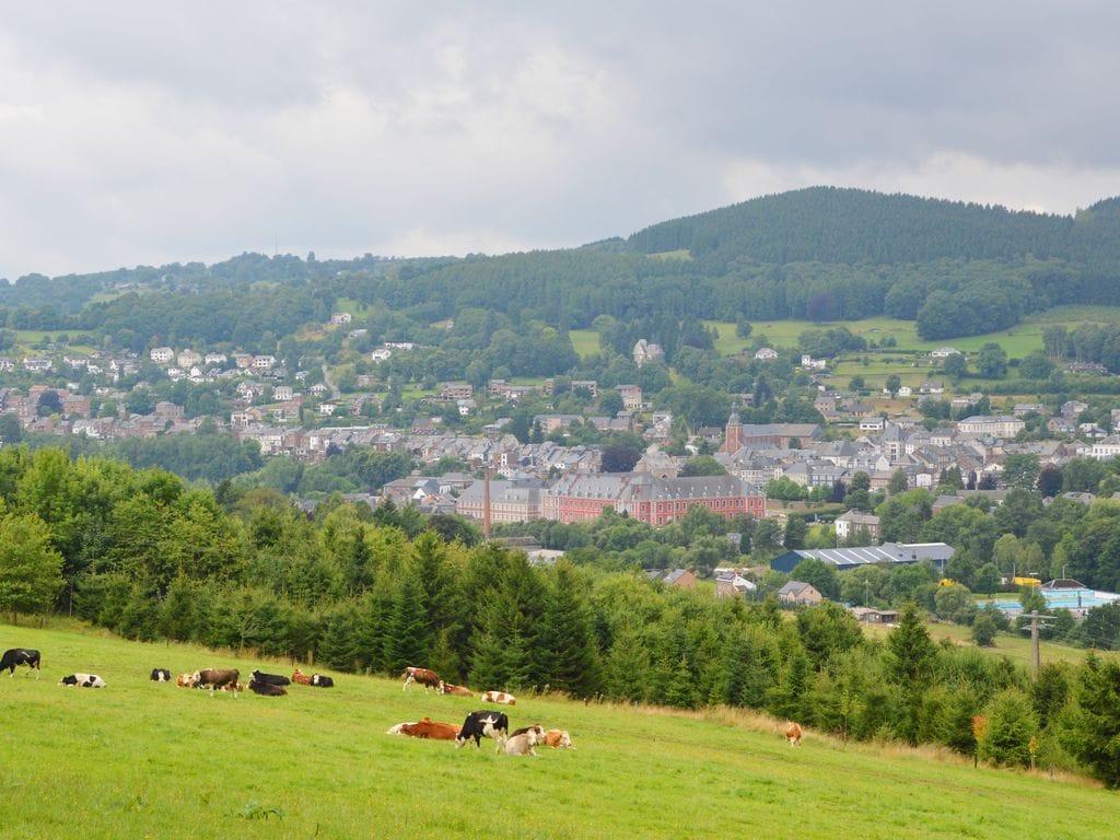 Ferienwohnung Gemütliches Appartement in Trois Ponts mit Terrasse (2452739), Trois-Ponts, Lüttich, Wallonien, Belgien, Bild 17