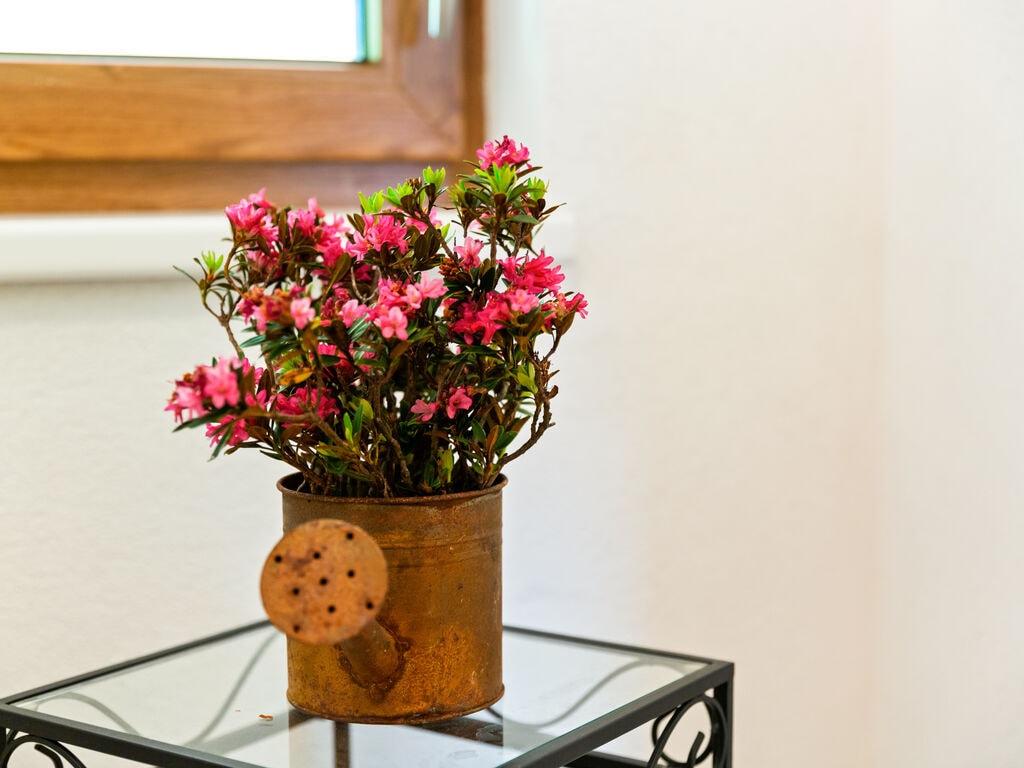Ferienwohnung Gemütliche Wohnung in Hollersbach im Pinzgau in Seenähe (2320399), Hollersbach im Pinzgau, Pinzgau, Salzburg, Österreich, Bild 25