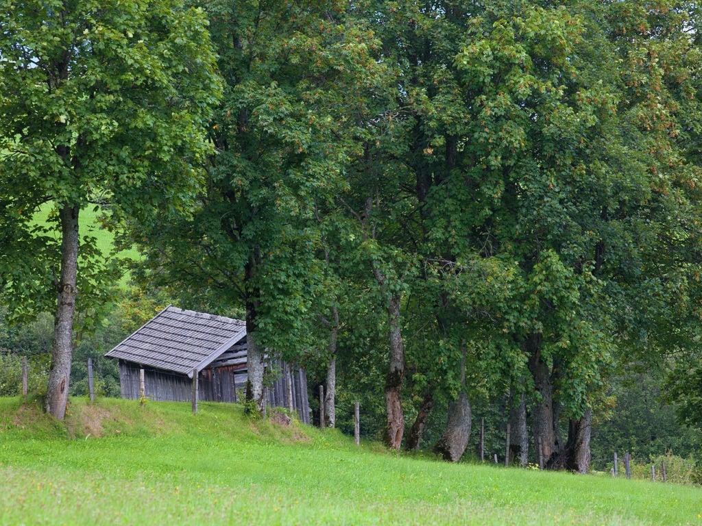 Ferienwohnung in Hollersbach im Pinzgau nahe dem Skigebiet (2320349), Hollersbach im Pinzgau, Pinzgau, Salzburg, Österreich, Bild 22