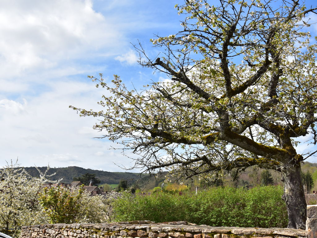 Ferienhaus Gemütliches Ferienhaus in Burgund mit Garten (2410174), Saint Gengoux le National, Saône-et-Loire, Burgund, Frankreich, Bild 4