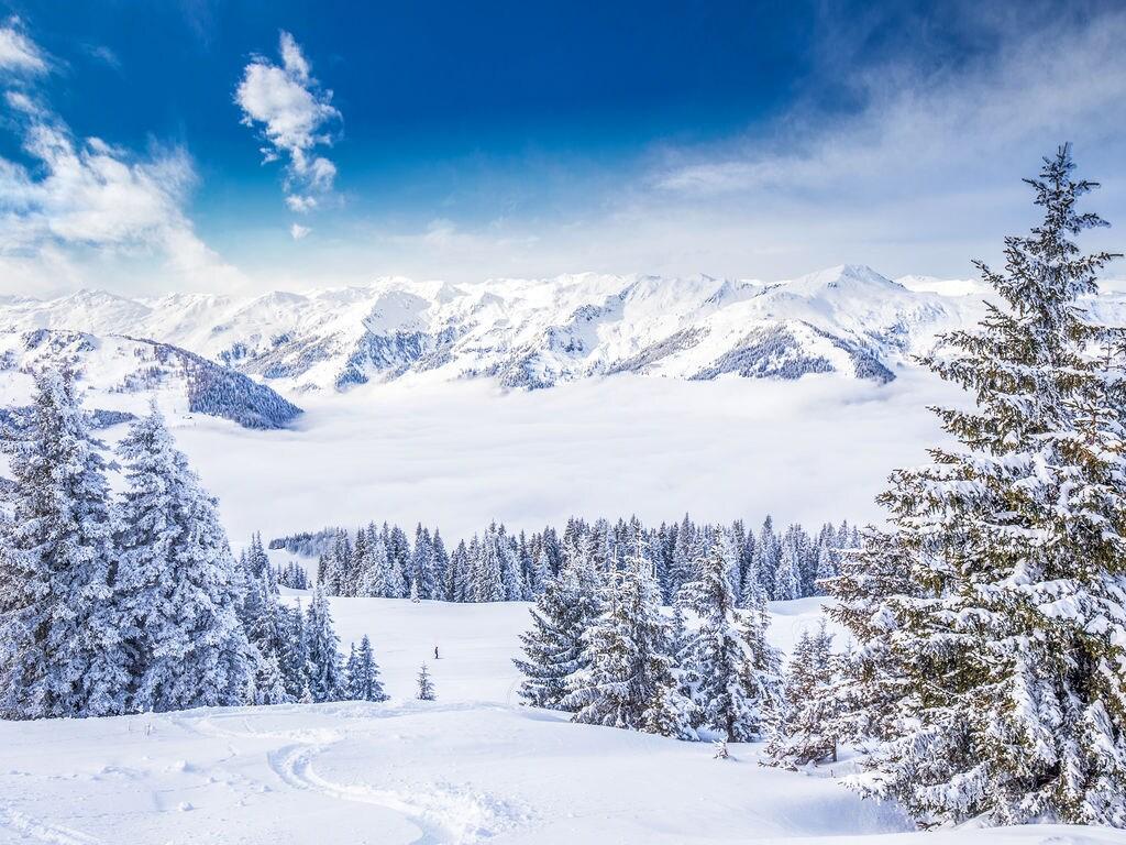 Appartement de vacances Rabl (2347266), Itter, Hohe Salve, Tyrol, Autriche, image 21