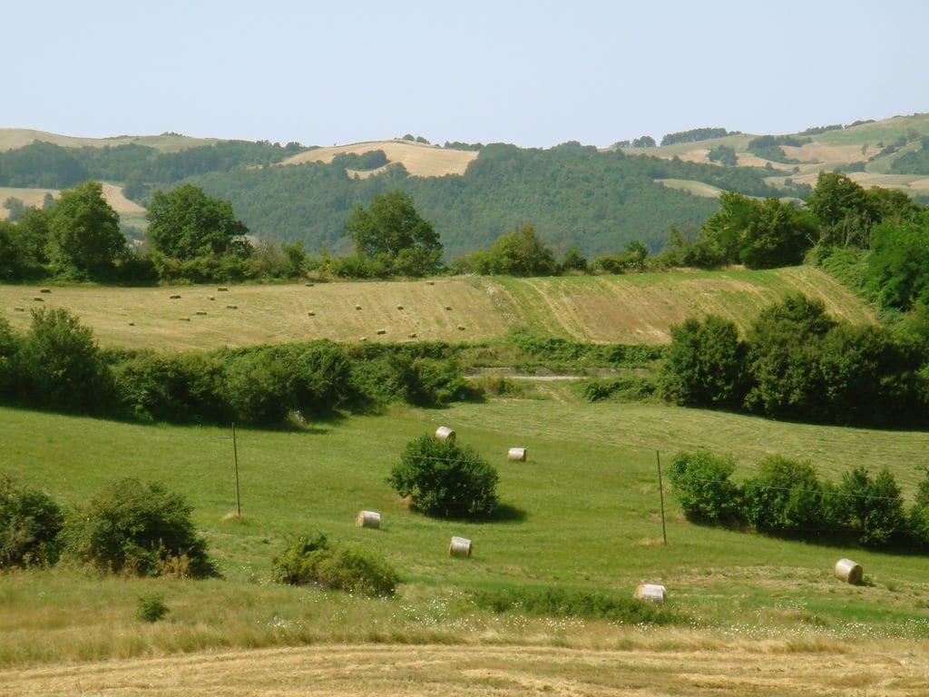 Ferienhaus Haus mit Schwimmbad, Garten und Internet Verbindung im mittelalterlichen Dorf mit Panorama (2356553), Campolieto, Campobasso, Molise, Italien, Bild 25