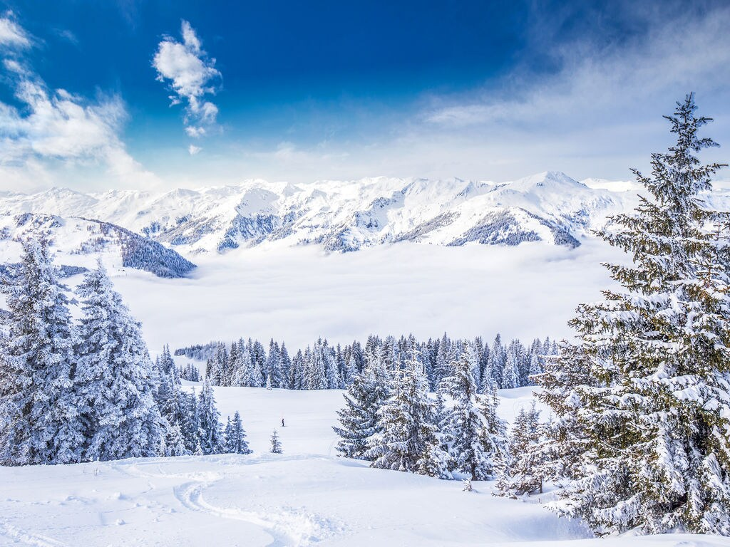 Appartement de vacances Dani (2368845), Itter, Hohe Salve, Tyrol, Autriche, image 24