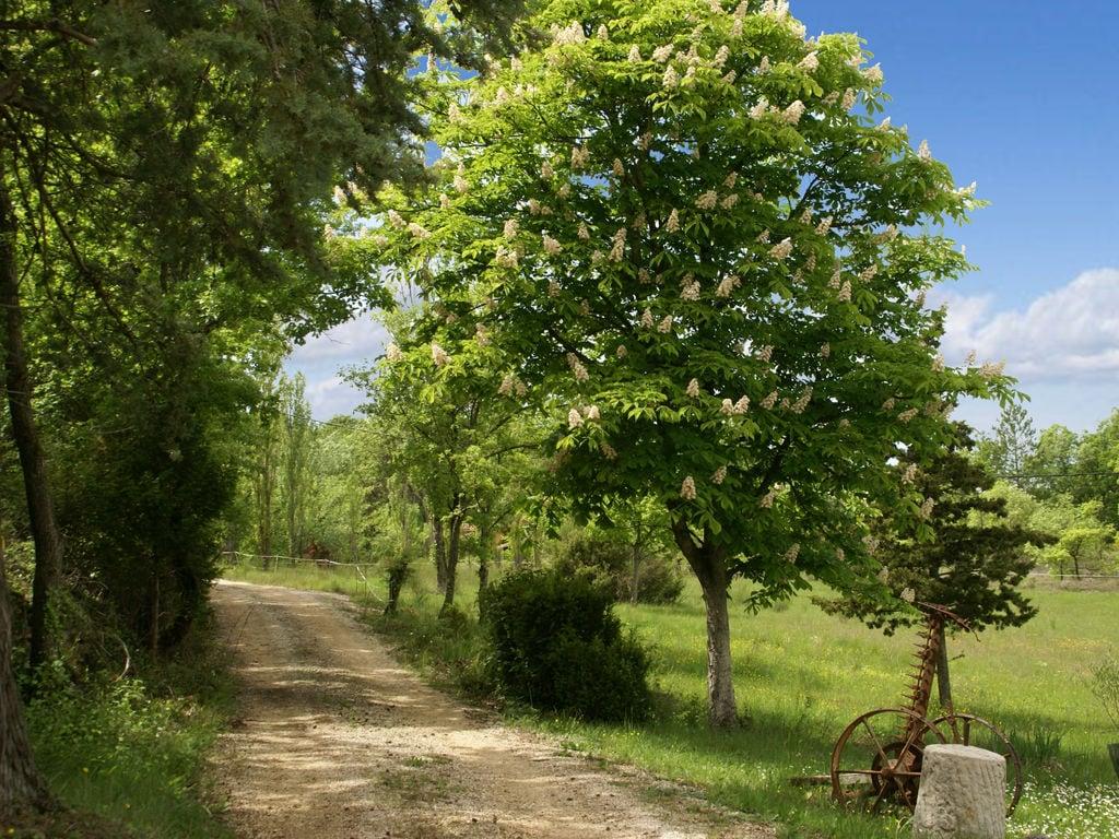 Ferienhaus Gehobene Villa in der Provence mit Terrasse und Garten (2419929), Apt, Vaucluse, Provence - Alpen - Côte d'Azur, Frankreich, Bild 36