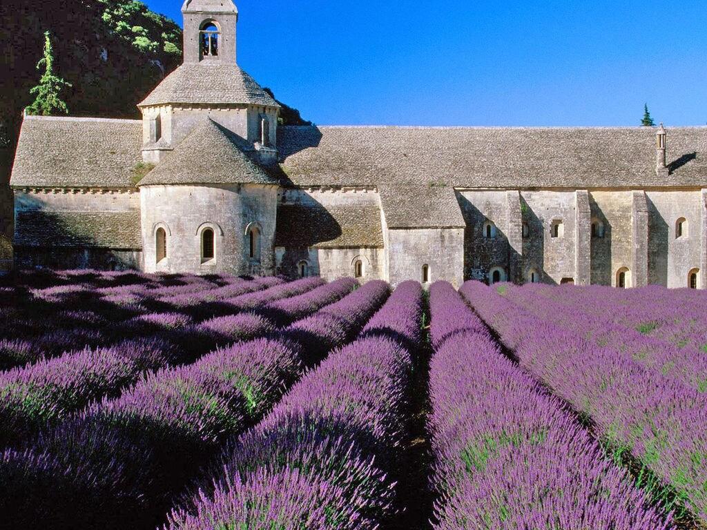 Ferienhaus Gehobene Villa in der Provence mit Terrasse und Garten (2419929), Apt, Vaucluse, Provence - Alpen - Côte d'Azur, Frankreich, Bild 38