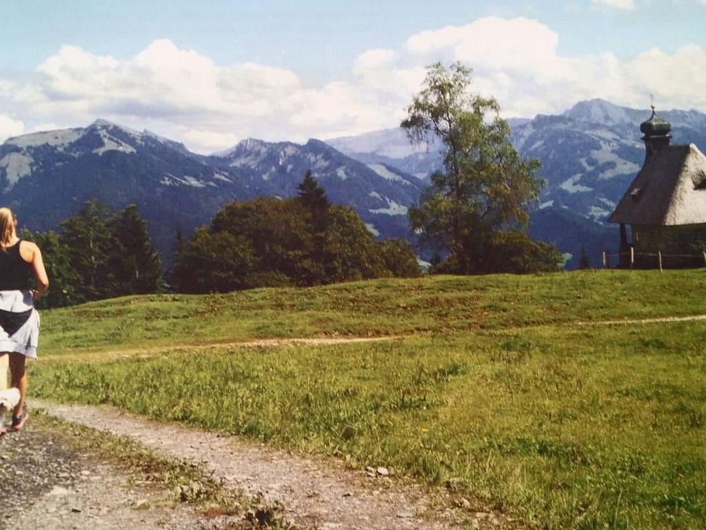 Maison de vacances Spielmoos (2413419), Schwarzenberg (AT), Bregenzerwald, Vorarlberg, Autriche, image 19