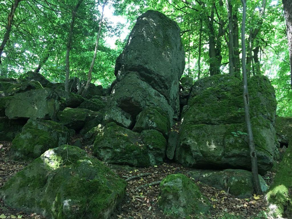 Ferienwohnung Wanderfreund (2447728), Waldbrunn, Taunus, Hessen, Deutschland, Bild 18