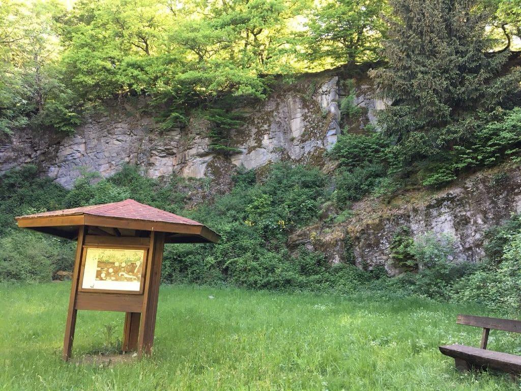 Ferienwohnung Wanderfreund (2447728), Waldbrunn, Taunus, Hessen, Deutschland, Bild 15