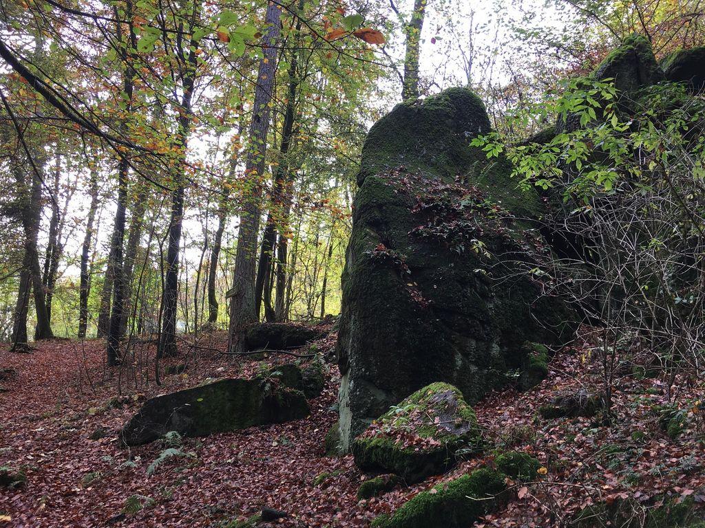 Ferienwohnung Wanderfreund (2447728), Waldbrunn, Taunus, Hessen, Deutschland, Bild 34