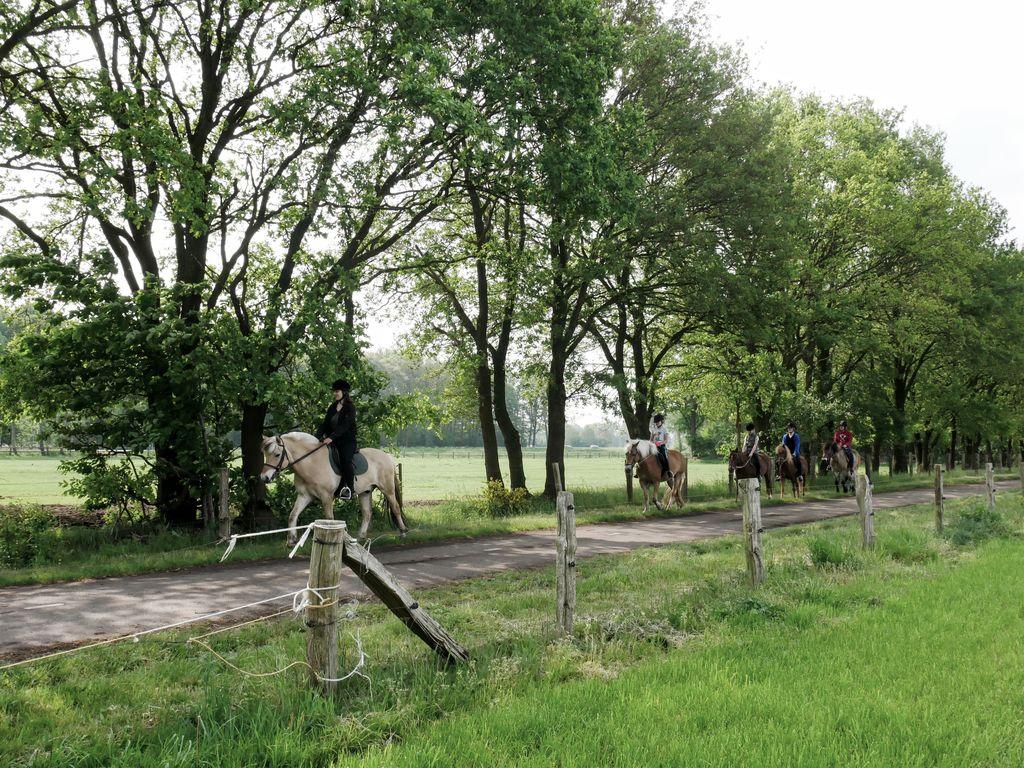 Ferienwohnung Erve Tank (2483834), Eibergen, Achterhoek, Gelderland, Niederlande, Bild 24