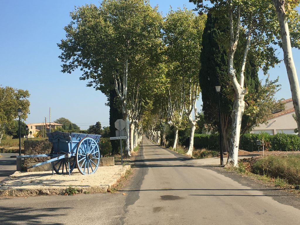 Maison de vacances Vintage-Villa in Montbrun-des-Corbières mit Garten (2541703), Azille, Aude intérieur, Languedoc-Roussillon, France, image 23