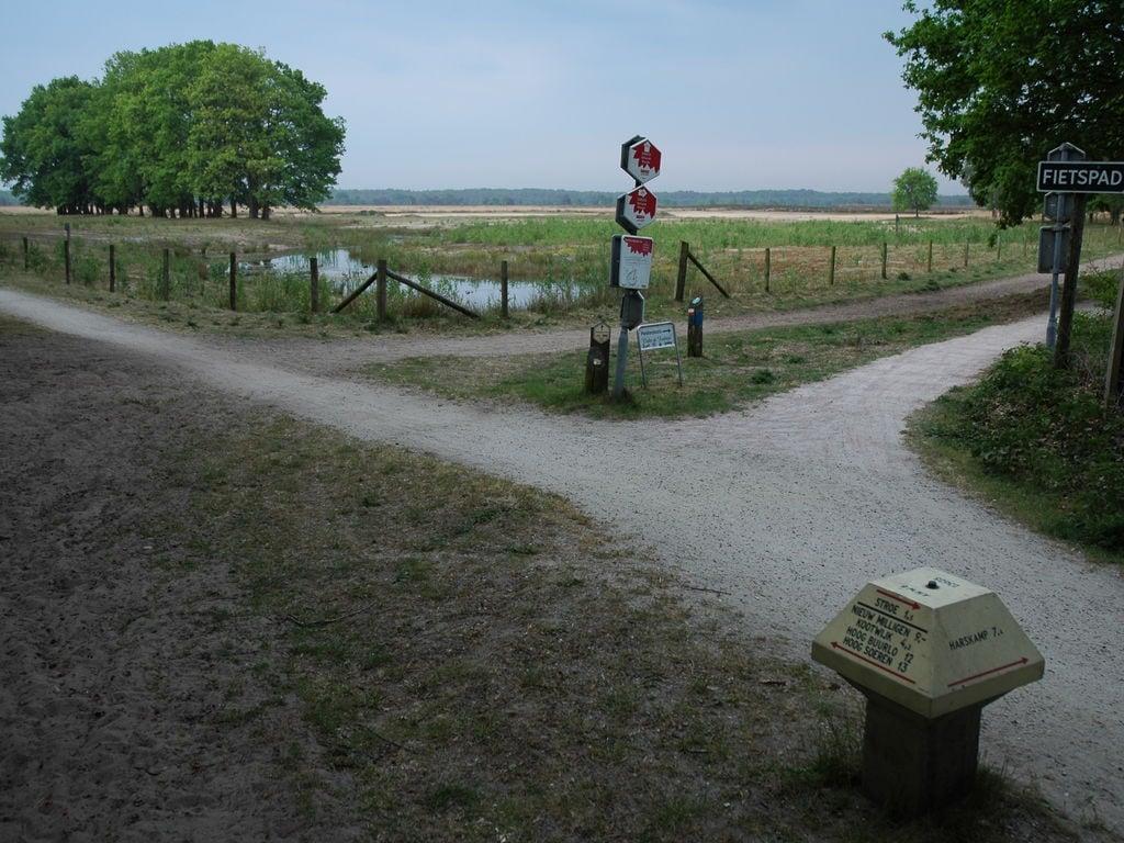 Ferienhaus Landgoed De IJsvogel 6 (2511708), Voorthuizen, Veluwe, Gelderland, Niederlande, Bild 18
